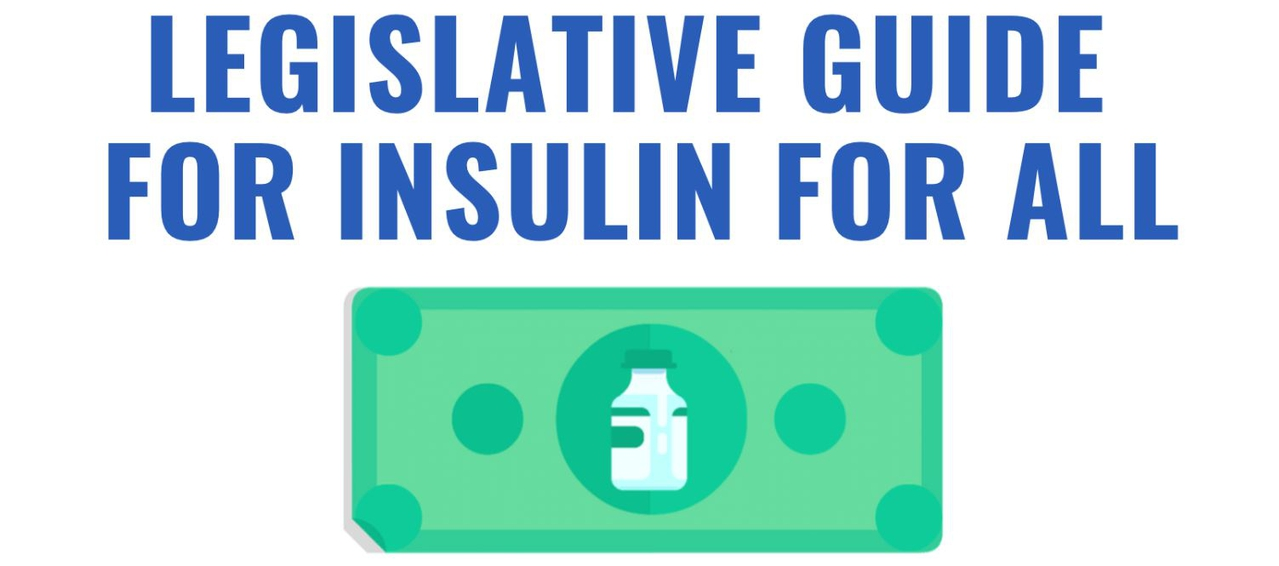 Launch of U.S. State Legislative Guide for Insulin for All